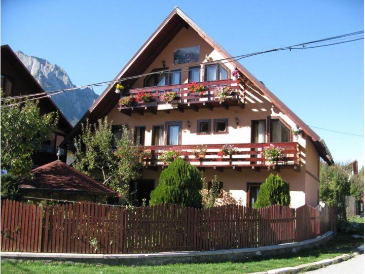 Camere de inchiriat Casa Topliceanu, Busteni