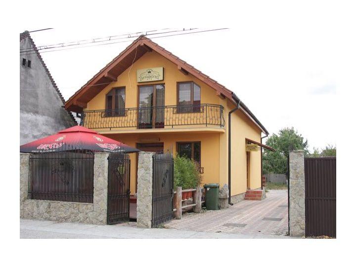 Vila Korona, Satu Mare oras