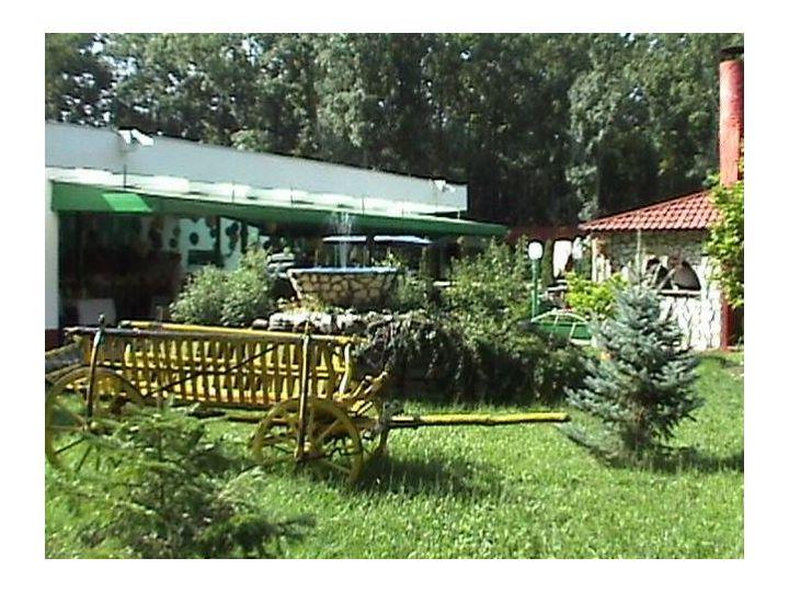 Campingul International, Timisoara
