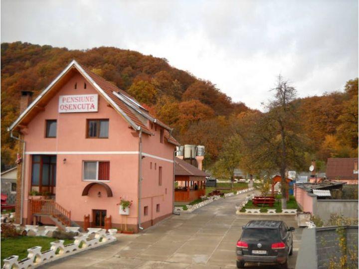 Pensiunea Restaurant Osencuta, Talmaciu
