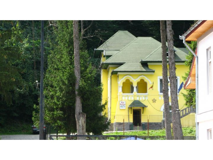 Vila Steluta, Calimanesti-Caciulata