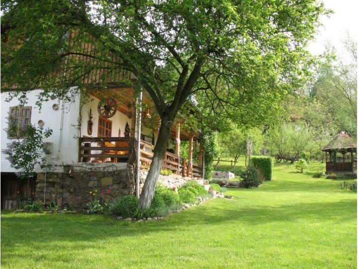 Camere de inchiriat casa de vacanta rustica, Valcea