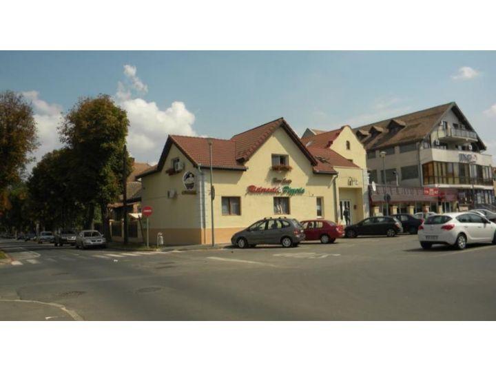 Pensiunea Buon Gusto, Sibiu-Oras