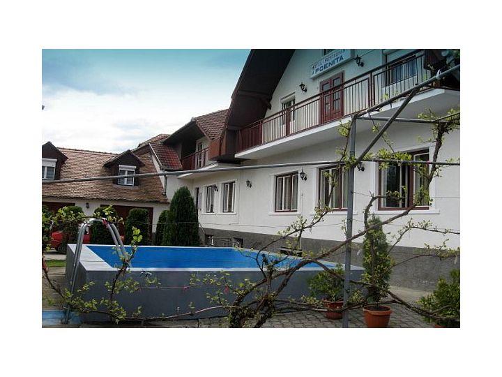 Hotel Poenita, Sighisoara
