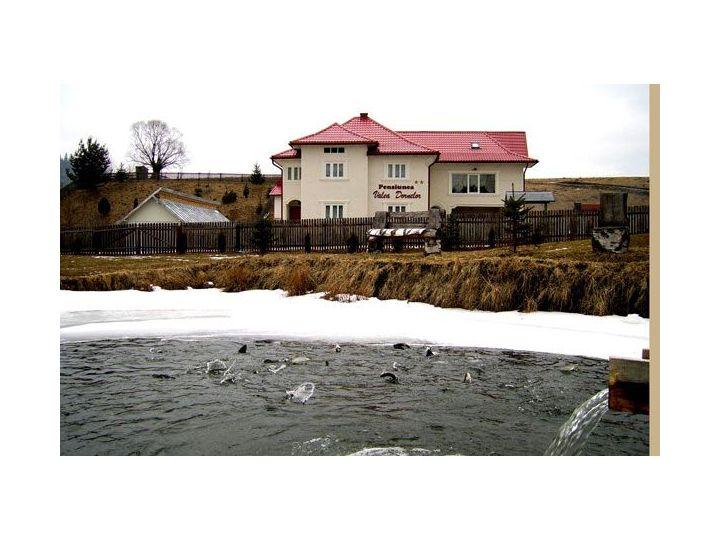 Pensiunea Valea Dornelor, Dorna Arini