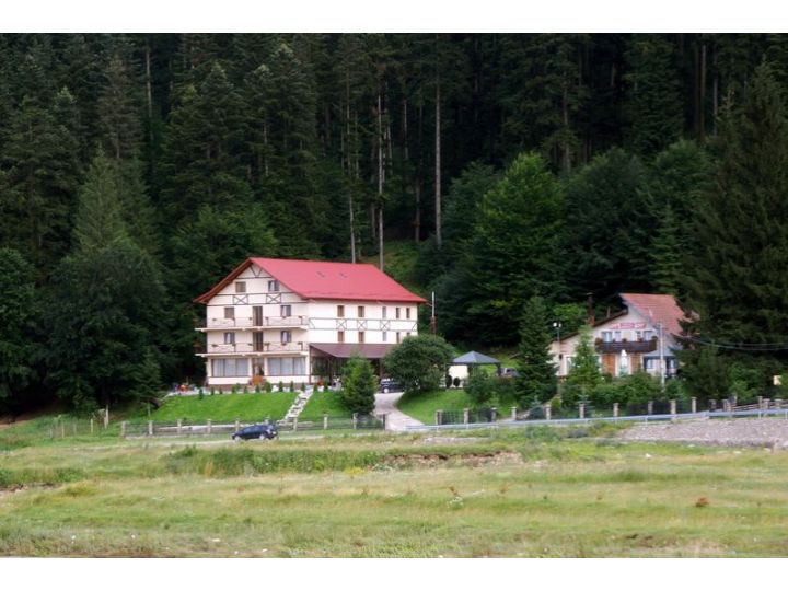 Pensiunea Voronet Residence