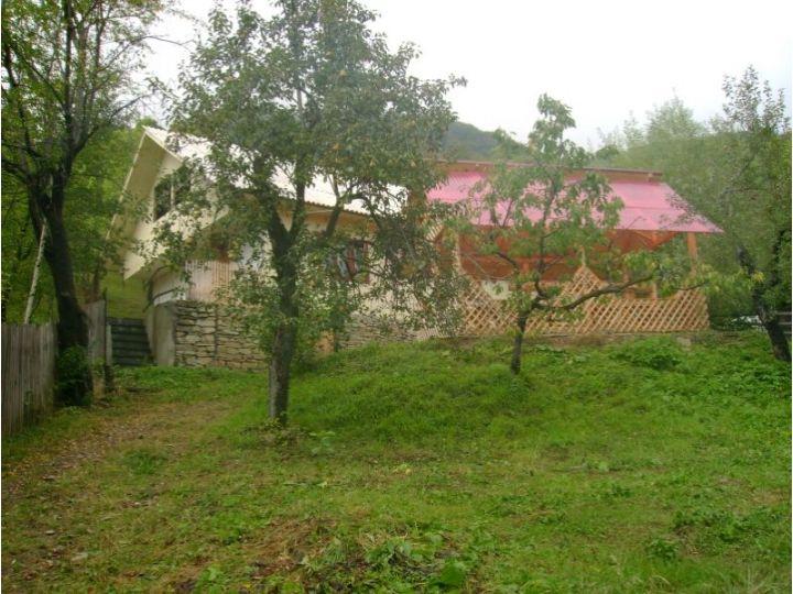 Vila Siriu, Siriu