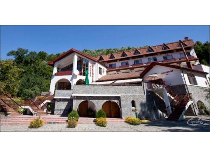 Hotel Mc Pietroasa